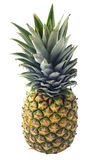 Geïsoleerdel het fruit van de ananas Stock Foto