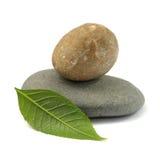Geïsoleerdel stenen met blad Stock Foto