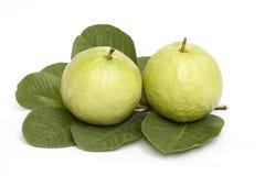 Geïsoleerdem guave Stock Fotografie