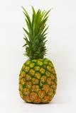 Geïsoleerden ananas Royalty-vrije Stock Afbeeldingen