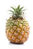 Geïsoleerden ananas Royalty-vrije Stock Fotografie