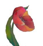 Geïsoleerden de tulp van de batik Stock Afbeeldingen