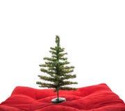 Geïsoleerden kerstboom Royalty-vrije Stock Foto's