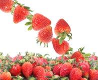 Geïsoleerdeo aardbeien Royalty-vrije Stock Fotografie
