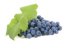 Geïsoleerdeo cluster van druiven Stock Foto's