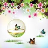 Geïsoleerdeo vlinder Royalty-vrije Stock Foto