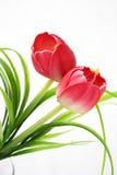 Geïsoleerdep bloemen Stock Fotografie