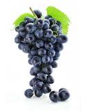 Geïsoleerder cluster van blauwe druif stock fotografie