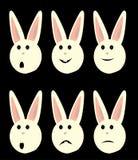 Geïsoleerder de gezichten van het konijntje Stock Foto's