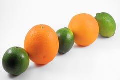 Geïsoleerder de Lijn van de citrusvrucht Royalty-vrije Stock Foto's