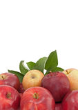 Geïsoleerder verscheidenheid van appelen met bladeren Stock Foto's