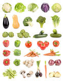 Geïsoleerdes groenten Stock Afbeeldingen