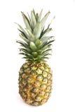 Geïsoleerdet ananas Stock Fotografie