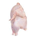 Geïsoleerdet kip met het knippen van weg Stock Foto
