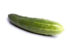 Geïsoleerdet komkommer Royalty-vrije Stock Afbeeldingen