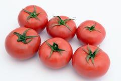 Geïsoleerdeu tomaten Royalty-vrije Stock Fotografie