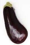 Geïsoleerdev aubergine Stock Fotografie