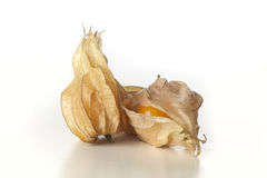 Geïsoleerdg Fruit Physalis royalty-vrije stock foto