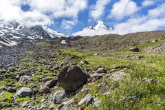 Geórgia, Cáucaso Fotografia de Stock