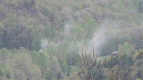 Geórgia, Woody Gap, fogo pequeno de A nas árvores para baixo abaixo da negligência em Woody Gap filme