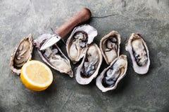 Geöffnete Austern mit Zitronen- und Austernmesser lizenzfreie stockfotos