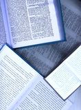 Geöffnete Bücher Lizenzfreie Stockbilder