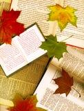 Geöffnete Bücher und Ahornblätter Stockfotografie