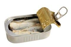 Geöffnete Dose Sardinen stockfoto