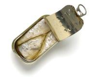 Geöffnete Dose Sardinen im Olivenöl Stockfotos