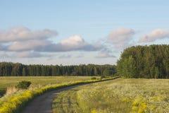 Geöffnete Luft des Panoramas lizenzfreies stockfoto