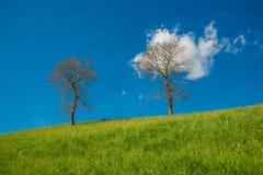 Geöffnete Luft des Panoramas Stockfoto