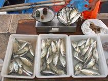 Geöffnete Luft-Fischmarkt stockbild