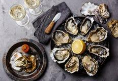 Geöffnete Oysters Fines de Claire stockbilder