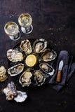 Geöffnete Oysters Speciale de Claire auf Platte und Weißwein auf dar lizenzfreie stockbilder