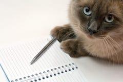 Geöffneter Notizblock der Katze, der Feder und des Leerzeichens Stockfotos