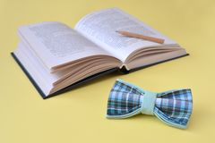 Geöffnetes Buch, eine Fliege und ein hölzerner Bleistift auf einem gelben Hintergrund mit Kopienraum stockbild