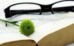 Geöffnetes Buch mit Gläsern und Blume lizenzfreies stockfoto