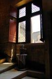 Geöffnetes Fenster auf Treppen mit Anlage Stockfotografie