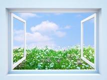 Geöffnetes Fenster mit Wiesenansicht Lizenzfreie Stockbilder