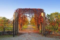 Geöffnetes Gatter überwältigt durch Efeu im Herbst Lizenzfreie Stockbilder
