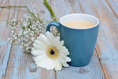 Ge blue cup of coffee on a wooden background with white Gerbera daisy decoration Stock Images