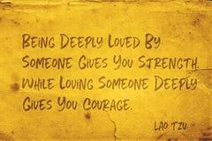 Ge kurage Lao Tzu arkivbild