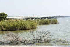 Ge Seebrücke Stockbild