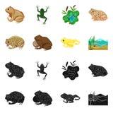 Ge?soleerd voorwerp van het wild en moerasembleem Inzameling van het wild en reptielvoorraad vectorillustratie stock illustratie