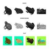 Ge?soleerd voorwerp van het wild en moeraspictogram Inzameling van het wild en reptielvoorraad vectorillustratie vector illustratie