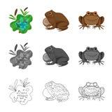 Ge?soleerd voorwerp van het wild en moeraspictogram Reeks van het wild en reptielvoorraad vectorillustratie royalty-vrije illustratie