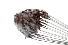 Geada do chocolate foto de stock