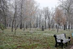 Geada do inverno Imagem de Stock