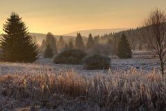 Geada e nascer do sol nas montanhas Fotos de Stock
