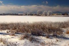 A geada e a neve cobriram o lago foto de stock royalty free